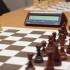 Шахматы — игра для адвокатов
